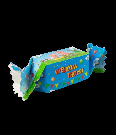 Kado/Snoepverpakking Koe - Welkom thuis achterkant